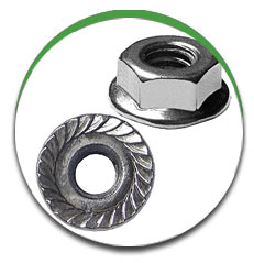Serrated Flange Nut